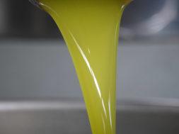 olivicoltura-sicilia-menfi-olio-appena-franto-la-goccia-doro