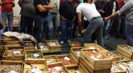 FEAMP 2014/2020, l'Assessore Gracolici ed il Direttore del Dipartimento Pesca Cartabellotta a Marsala