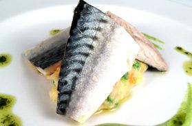 sgombro-trancio-cucina-pesce-azzurro