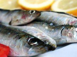 Vini e sapori di Sicilia in un workshop sulla Dieta Mediterranea