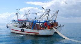 Feamp, milioni di euro nei bandi per la pesca siciliana