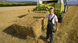 Agricoltura, il sud cresce mettendo in campo le sue migliori risorse: i giovani