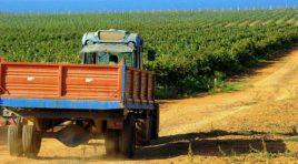 Favignana, concluso il 23° Enosimposio, tema dell'incontro: la viticoltura eroica