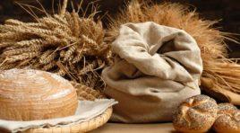Selinunte, i cereali e i legumi del Parco Archeologico, mercoledí la mietitura del grano
