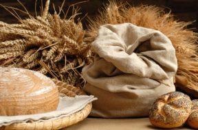 Il-Pane-in-Piazza,-l'evento-di-Isola-delle-Femmine-Grano-farina-e-pane