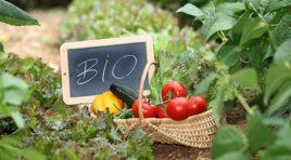 Sbloccati 320 milioni di euro per il biologico del 2012