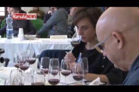 Enodamiani, anteprima sulle produzioni vitivinicole siciliane, degustati 150 vini dell'ultima vendemmia