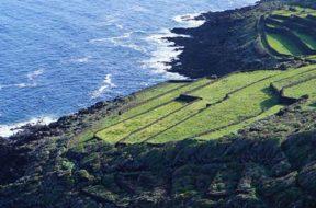 PASSITALY 2017 nuovi scenari per l'isola ed il Passito di Pantelleria3