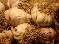 Tradizione, natura e gastronomia a Nubia il 9 e 10 settembre la nuova edizione di Rosso Aglio e Bianco Sale2