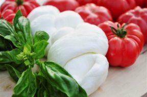 Agroalimentare tricolore mozzarella pomodoro basilico