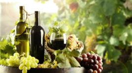 """Coldiretti: """"+ 5,9% l'esportazione di vino Made in Italy"""""""