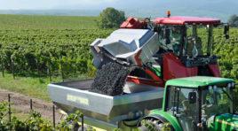 Due nuovi Bandi per gli agricoltori siciliani