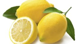 Limoni di Sicilia, una tradizione lunga mille anni