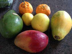 Frutta tropicale, la scommessa made in Sicilia