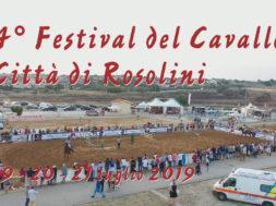 still yt festiva cavallo rosolini