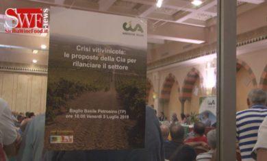 Viticoltura in ginocchio, la disperazione dei produttori