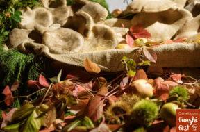 Funghi Fest 2019_I funghi della Madonie cardoncelli, porcini, ovuli e basilisco (31)