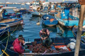 piccola pesca dei flag della Sicilia occidentale
