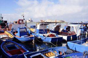 Al via la selezione di 120 pescatori professionali da coinvolgere ad un ciclo di incontri informativi online